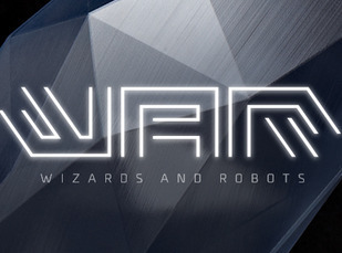 Wizards and Robots